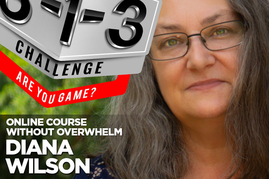Podcast! The 3-1-3 Challenge with Ryan Foland: Diana Wilson